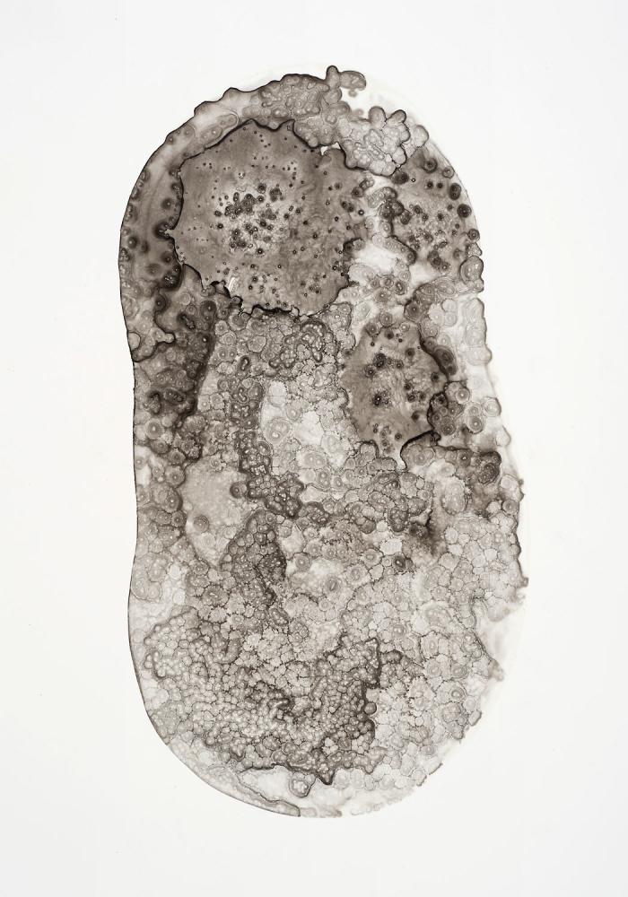 Michelle Concepción, Pearl 63, acrylic on paper, 32 x 22 cm, 2013
