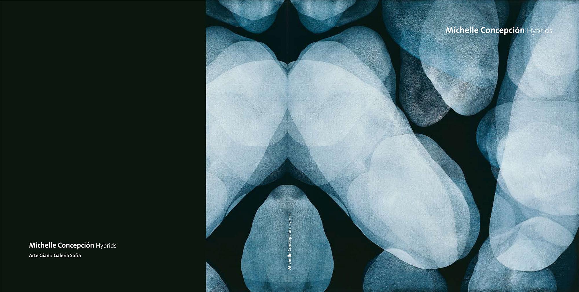 Michelle Concepción, exhibition catalogue: Hybrids 2008