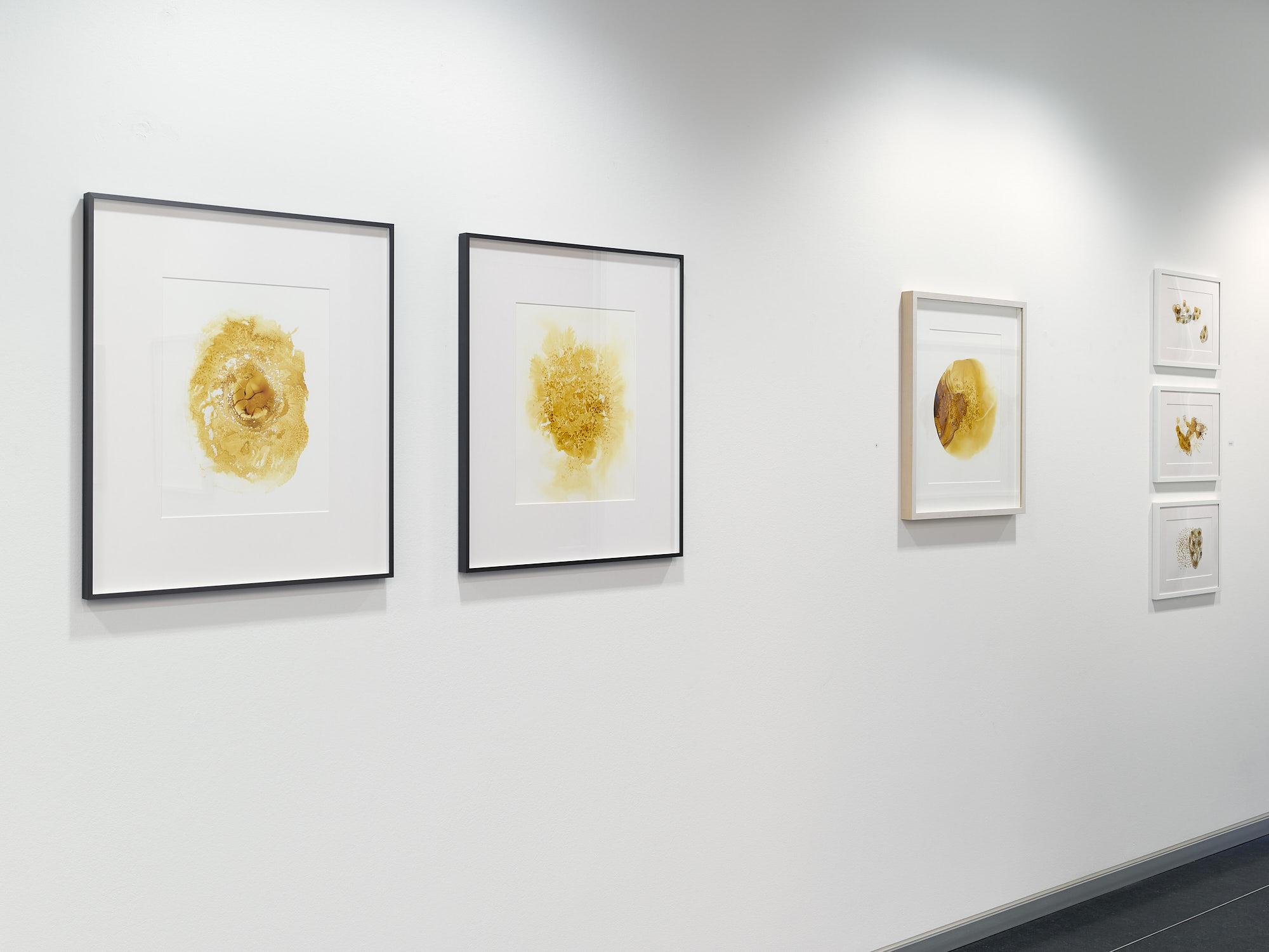 Michelle Concepción, Ambers, exhibition view